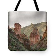 Leslie Gulch Tote Bag