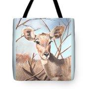Lesser Kudu Tote Bag
