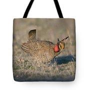 Lesser Prairie Chicken Tote Bag