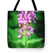 Lesser Purple Fringed Orchid Tote Bag