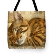 Let Sleeping Cats Lie Tote Bag