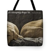 Let Sleeping Dogs Lie Tote Bag by Gwyn Newcombe