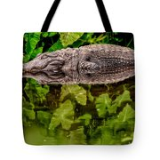 Let Sleeping Gators Lie Tote Bag