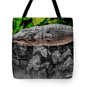 Let Sleeping Gators Lie - Mod Tote Bag