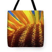Let The Light Shine In Tote Bag