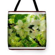 Let The Sun Shine Down On Me Tote Bag
