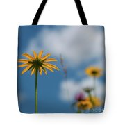 Let The Sunshine In... Tote Bag