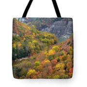 Letchworth Falls Sp Fall Colored Gorge Tote Bag