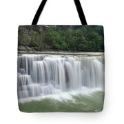 Letchworth Falls Sp Lower Falls Tote Bag