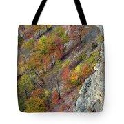 Letchworth Falls State Park Fall Colors Tote Bag