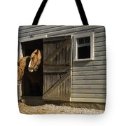 Let's Go Out Tote Bag