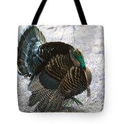 Lets Talk Turkey  Tote Bag