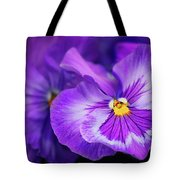 Letters To Violet Tote Bag