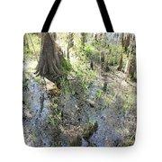 Lettuce Lake Swampland Tote Bag