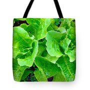 Lettuces Tote Bag
