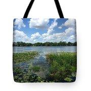 Leu Gardens Waterscape Tote Bag