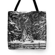 Leutasch Snow Trail 2 Tote Bag