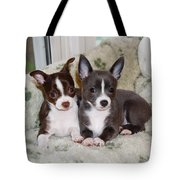 Lexi And Gracie Tote Bag