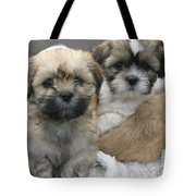 Lhasa Apso Puppy Painting Tote Bag