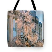 Liberty Court House Tote Bag