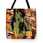 Lichen Castle In Autumn Leaves Tote Bag