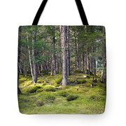 Lichen Covered Mountain Floor Tote Bag