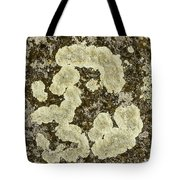 Lichen Design Tote Bag