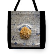 Lichen On The Trees 1 Tote Bag