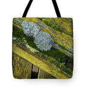 Lichen On Wood. Tote Bag