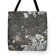 Lichen On Wood Tote Bag