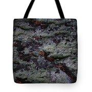 Lichen Texture Tote Bag