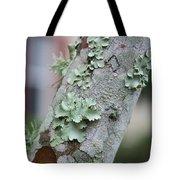 Lichens 2 Tote Bag