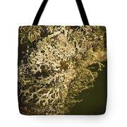 Lichens In Oregon Tote Bag