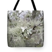 Lichens In The Plums Tote Bag