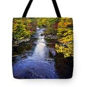 Lidia's Hidden Creek Tote Bag