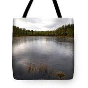 Liesilampi Tote Bag