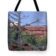 Life And Death Tote Bag