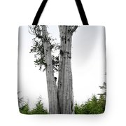 Life At The Top - Duncan Cedar Olympic National Park Wa Tote Bag