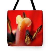 Life Center Tote Bag