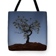 Life Force Tote Bag