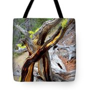 Life From Death Tote Bag