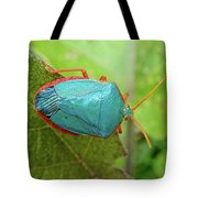 Life In The Cloud Forest 4 Tote Bag