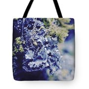 Life In The Cloud Forest Tote Bag