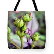 Life Is Abound Tote Bag