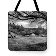 Life Leads Us Along Many Paths Tote Bag