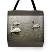 Life Of A Youngster. Tote Bag