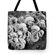Life On The Rocks In Black And White Tote Bag