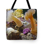Life Under The Sea In Monterey Aquarium-california Tote Bag