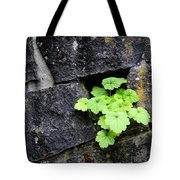 Life Will Find A Way Tote Bag