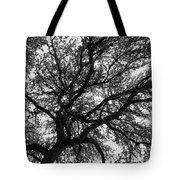 Lifeline Tote Bag